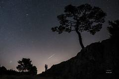 Perseida y fotgrafo 225_2016_8679 (Jos Martn-Serrano) Tags: proyecto proyecto366 proyecto365 365 366 perseida perseidas nocturnas nocturna contraluz