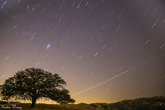 Meteor Shower 2016 (katiewong511) Tags: moonset meteorshower sky livermore california eastbay