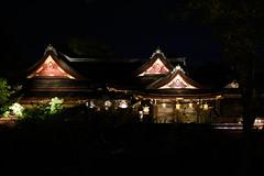 DSC_4036 (kazuchan_nara) Tags:   kyoto japan kitanotenmangu