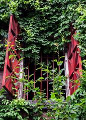 Uminekoya (campra) Tags: japan hokkaido otaru wall building architecture window warehouse rust restaurant red blinds ironai