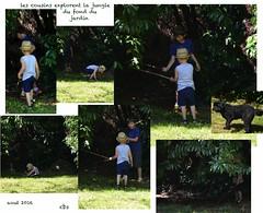 les cousins dans la jungle (catimini) Tags: jardin garons chien