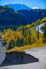 Match (stevenbulman44) Tags: mountain roadway color landscape tree canon kananaskis lseries filter polarizer 70200f28l