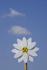 _DSC6405 (Nonesmanneslond) Tags: slovenia slovene kitnivhr