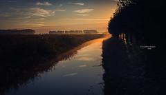 Good morning, Empel! (Ingeborg Ruyken) Tags: 2016 500pxs empel ditch dropbox flickr fog mist morning natuurfotografie ochtend september sloot summer sunrise water zomer zonsopkomst