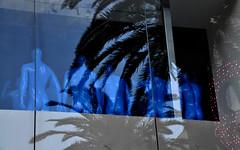 Blue Vegas (Santi-Jose) Tags: men nakedmen bluemen windowdisplay vegas lasvegas palmtrees