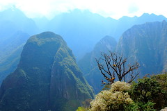 Machu Picchu - Peru (Wellington-stm) Tags: machu picchu