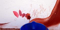 _DSC3561_v1 (Pascal Rey Photographies) Tags: arturbain art urbanart underground peinturesurbaines peinturesmurales photographiecontemporaine photos photographie photgraphy streetart streetphotography acidule acidules tags pochoirs popart pop psychdlique psychedelic lyon lugdunum musedartcontemporaindelyon