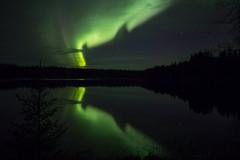 25092016-IMG_1211 (P-O Andersson) Tags: vsterbottensln sverige se sky night borealis aurora light northern