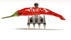 Hot Food (Sa Mu) Tags: red hot food macromondays handlewithcare