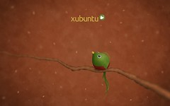Xubuntu Quetzal Wallpaper (HenryCameron57) Tags: wallpaper quetzal xubuntu quantal