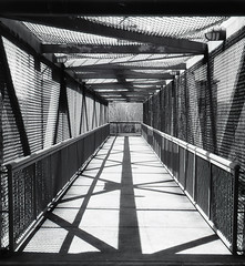 Passage to the river (inetjoker) Tags: nikon tennessee f100 iso 25 diafine clarksville so331