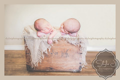 (Skylar J Photography) Tags: boys photography twins babies newborn nephews premies skylarjphotography