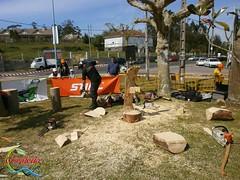 Exhibicin de Abel de Vicente (Historia de Covaleda) Tags: espaa spain fiesta paisaje douro pinos soria historia pinar tradicion duero covaleda