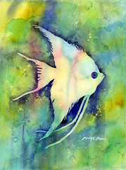 Angelfish I (Hailey E Herrera Art Journey) Tags: fish angelfish