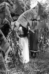 Getting White Dressed (sajithravindran) Tags: india festival mourning fullmoon transvestite bangle crossdresser tamilnadu tg transsexual hijra cwc thaali transgenders mangalsutra aravani sajith childrenofgod 3rdsex koovagam koothandavar oppari thirunangai aravaan chennaiweekendclickers chitrapoornami ulunthurpettai bridesofgodaravaan cuttingthali sajithravindran sajithphotography