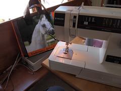 P4263521 (connors934) Tags: bag sewing jpg recycling feedbag reuse groceryfeedbag