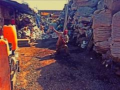 posando en el tiradero (Fernando Barroso) Tags: garbage posing basura recycling hdr posando reciclaje tiradero recoleccion streamzoo