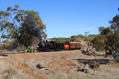 NM25 - The Afghan Express - Summit (Wings and Wheels) Tags: railroad heritage train bush south volunteers rail railway australia historic steam ranges pichi outback locomotive southaustralia flinders preservation steamtrain quorn richi flindersranges prr pichirichi pichirichirailway railwaypreservation