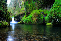 Punchbowl Falls (pdxsean) Tags: green water oregon forest waterfall woods northwest hike columbiarivergorge eaglecreek punchbowlfalls nationalscenicarea