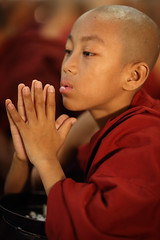 Myanmar, monks and novices (Dietmar Temps) Tags: travel red portrait people pagoda asia asien southeastasia sdostasien faces maroon buddha yangon burma buddhist traditional religion culture buddhism bowl adventure monastery journey monks myanmar mon shan tradition pali burmese birma mandalay bagan rangoon amarapura novice birmanie sagaing birmania mianmar theravada bamar monasticschool