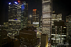 Honeymoon in Toronto (Guylaine Begin) Tags: city light moon toronto ontario canada night lune spring cityscape lumire capital financialdistrict 200 capitale nuit printemps 1500 1000 ville gettyimages bulding 260 159 hogtown gratteciel paysageurbain 1570 villereine