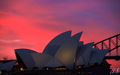 The Dreaming (Heatwaves Australia) Tags: pink sunset colour harbour sydney vivid australia operahouse harbourbridge aaa canon5dmk3 arlsphoto