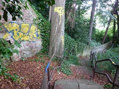 Graffiti Jungle (milnefaefife) Tags: trees leaves woodland landscape graffiti scotland dundee path branches steps treetrunk harris railing steep thejungle harrisacademy