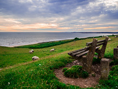 scenery 2 (1 of 1)-5 (ryanpower2) Tags: orangesky sky sunset cool calm sea ogmore wales sheep bench amateur