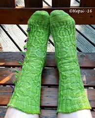 2016-07-26 15.15.58 (hepsi2) Tags: sukat socks sukkia tds2016