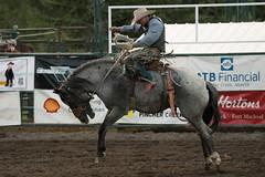 Tak_CPRA_2016-5196 (takahashi.blair) Tags: coachtak rodeo blairtakahashitakahashiblaircoachtakblairtakahashi pincher creek barrel racing bronc rope bareback steer bullriding