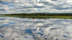 Labrador Reflections (Jos Pockett) Tags: pfwater16 sky clouds pinetrees water lake reflection blue white translabradorhighway explorecanada labrador canada roadtrip iamcanadian