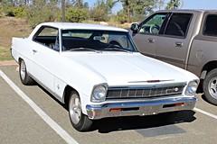 1966 Chevy II Nova SS (AZ Ashman 88) Tags: chevy chevrolet nova chevynova chevyii ss supersport chevysupersport 1966chevynova prescottaz