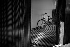 The Jordaan (Steven Eric Parker) Tags: amsterdam jordaan monochrome blackwhite nikon610 2470f28ged