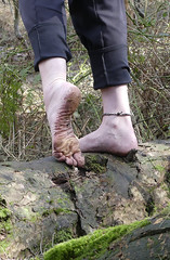 Log walking (Barefoot Adventurer) Tags: barefoot barefooting barefooter barefeet baresoles barefooted barefoothiking barfuss freedom nature naturalsoles earthsoles earthing earthstainedsoles toughsoles texture callousedsoles leathersoles livingleather toespread