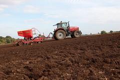 Massey Ferguson 6499 (hughdiniphoto) Tags: masseyferguson mf farming yorkshirewolds yorkshire vaderstad drill seeddrill seeding