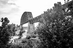 Rusted Bridge (Capture Lights) Tags: architectural architecture bridge bw indiana kentucky monochrome ohio ricohgr river