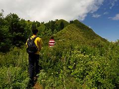 Miranjani: Start of the ridge (Shahid Durrani) Tags: miranjani nathiagali hike