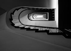 the Hardenberg house - secondary staircase (rainerralph) Tags: olympus architektur hauptstadt haushardenberg staircase bw nebentreppe berlin charlottenburg treppenauge paulschwebes objektiv1240pro architecture secondarystaircase omdem5markii capital 19551956 berlincharlottenburg deutschland de