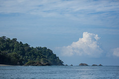 20160130-5C4A0098 (Take-it-easy59) Tags: 2016 30012016 corcovado corcovadoparquenacional costarica npcorcovado nature naturephotography tropicalrainforest tropischregenwoud winter