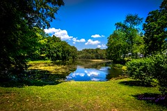 NJ Landscape (a2roland) Tags: norman zeb a2rolandyahoocom flicker photo landscape nature green blue sky reflection cloudy grass trees leaves autumn sunshine water wide angle nikon lens picture