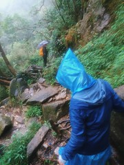 IMG_9153 (Seif Sallam) Tags: travel vietnam sapa fansipan hiking trekking