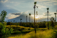 Mount Agung (Kartjb) Tags: indonesia indonsie bali island agung mount mountain volcano sunset nature landscpae paysage a7 sony travel amed volcan