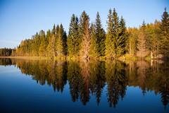 Mood (helen.lindholm) Tags: fotosondag fs160918 stamning autumn reflections