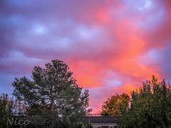 Scenery, autumn sunset   IMG_0833 Le coucher du soleil  l'automne (Nicole Nicky) Tags: couchersoleil lautomne sunset autumn red pink rouge rose outdoor dehors sky ciel nuage cloud canonpowershot