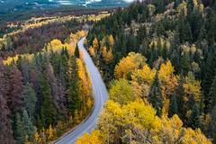 Jasper (robertopastor) Tags: amrica canada canadianrockiesmountain canad fuji jasper montaasrocosas robertopastor skytram viaje xt2 xf1655mm