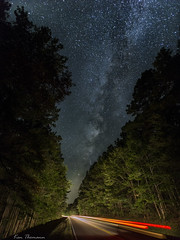 Between The Trees... (Ken Thomann Photography) Tags: quiet tranquil wideangle explore 30seconds evening reallyrightstuff road trees traffic trails tupelo texture unitedstates outdoor outinnature photography astrophotography stars deepsouth fun grass gravel hiking highway kenthomannphotography landscape longexposure lighting lights lightpainting canon1635mmf28lii canon6d canon velocity nightphotography nature nightscapes nightsky night naturesbeauty natcheztraceparkway