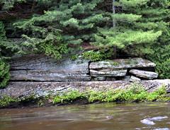 Alligator Rock (Vinny Gragg) Tags: dells thedells wisconsin wisconsindells wisconsindellswisconsin upperboattours lowerboattours rockformations upperdellsboattours lowerdellsboattours alligatorrock rockodile rockadile