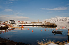 Winterromance (joningic) Tags: houses winter sea sky sun house nature iceland harbour sunnyday hjalteyri hrgrsveit