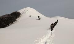 Caminos paralelos (Paulo Etxeberria) Tags: snow path nieve neige parallel elurra mountaineers okoro paralelo alpinistes baztan montañeras montañeros parallèle urkiaga mendizaleak clubvascodecampingelkartea