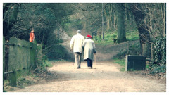 Together Forever (The Stig 2009) Tags: thestig2009 thestig stig 2009 tony o tonyo old couple together forever red beret walking sticks park hampstead london heath